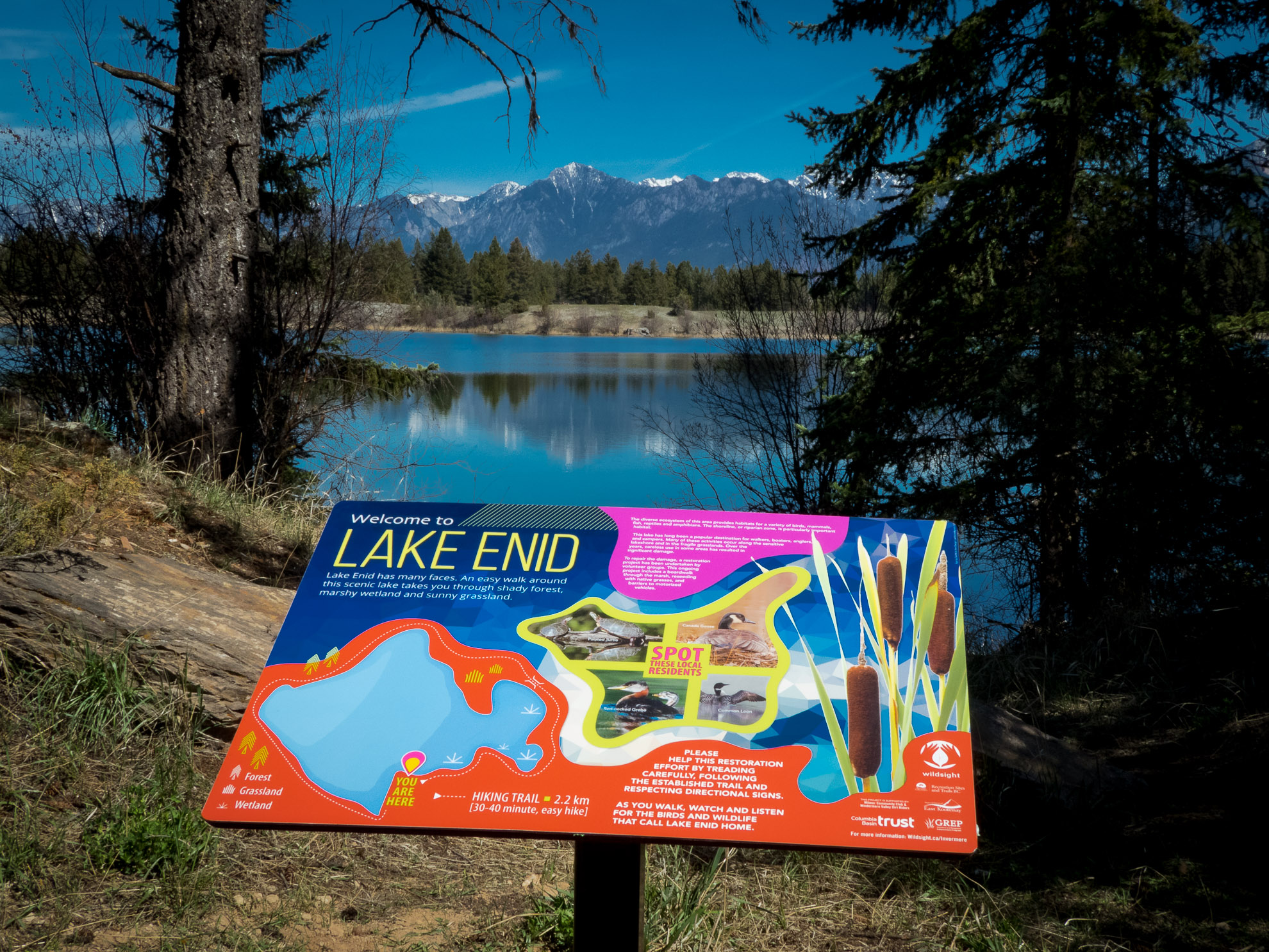Wildsight interpretive sign at Lake Enid, near Wilmer BC
