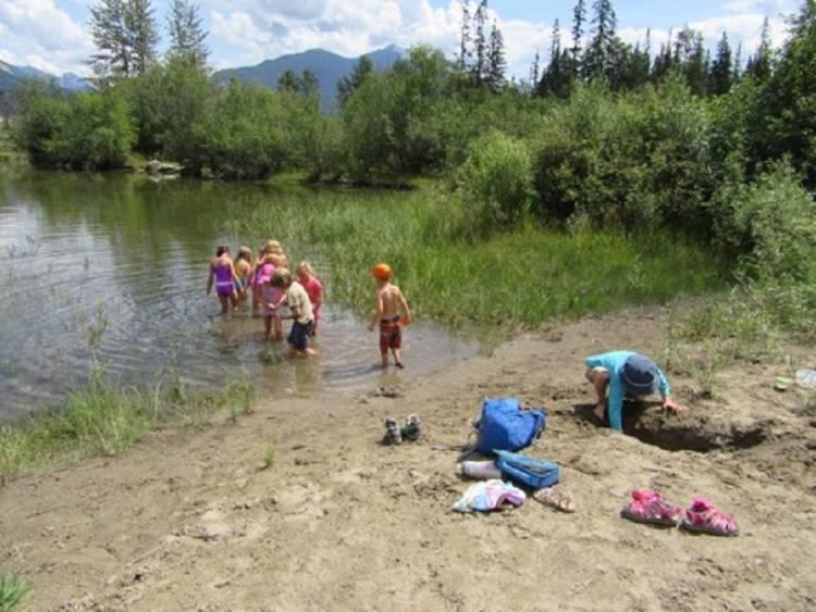 Get Wild! Wetland Fun