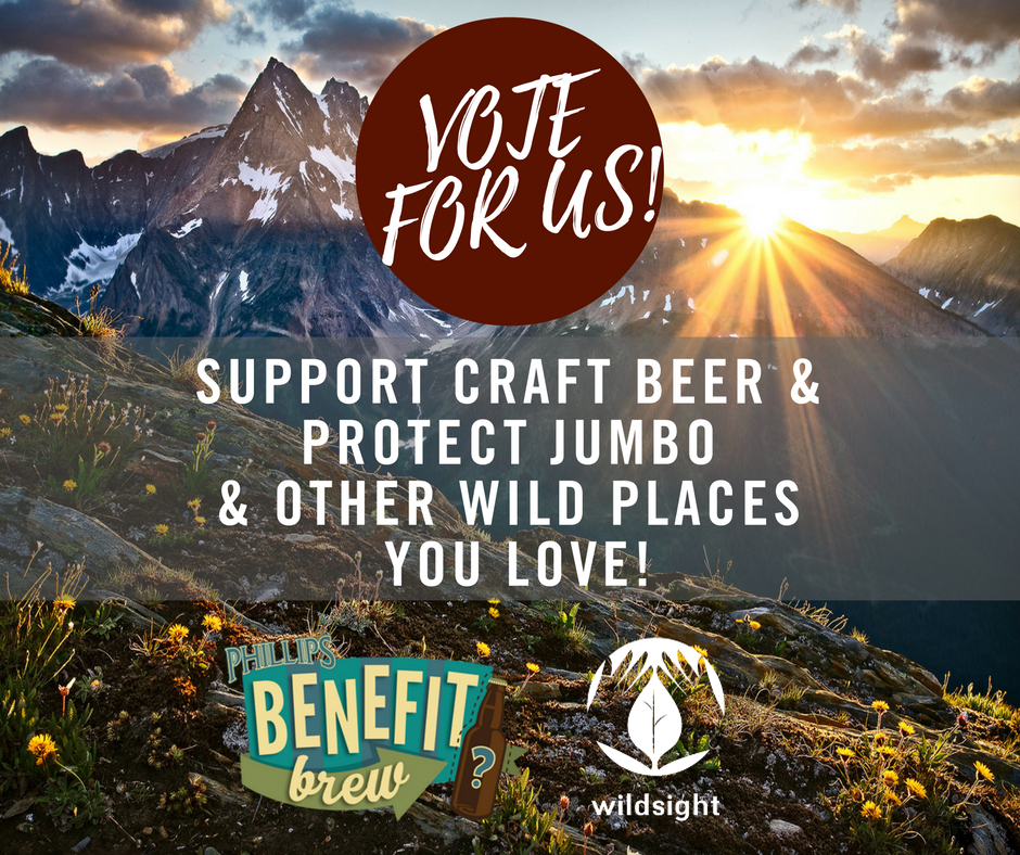 benefit-brew